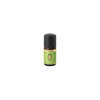 Ätherisches Öl - Eukalyptus globulus bio 10ml