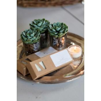 Massage Teelichter Lavendel