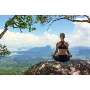 Zen Fasten - Fasten, Schweigen und Meditieren - 10 Tage